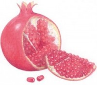 news_hair_oil_pomegranate